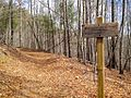 Trail to Deadennen Mountain - panoramio.jpg