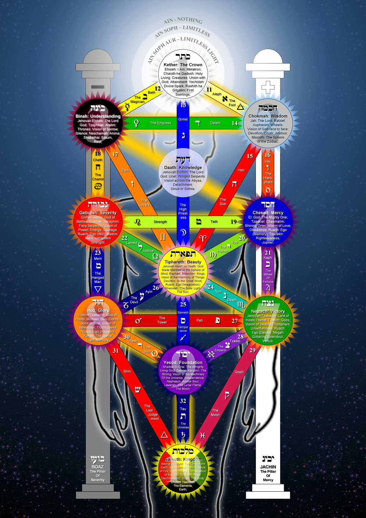 File Tree Of Life 2009 Large Png Wikimedia Commons The tree of life is a map; file tree of life 2009 large png