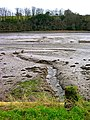 Tresillian River Mud - geograph.org.uk - 718361.jpg