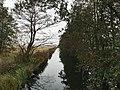 Treuenbrietzen-Niebel Friedrichsgraben Blick nach Südosten.jpg