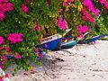 Trinitarias en la Playa (Pampatar, Isla de Margarita).JPG