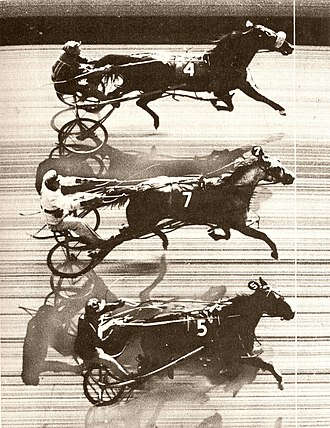 Photo finish - A photo finish record of the first triple dead heat in harness racing: Patchover, Payne Hall and Penny Maid at Freehold Raceway (US).