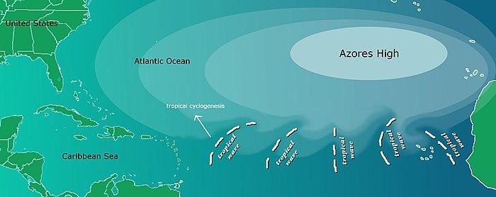 Tropical Wave Wikipedia