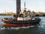 Tug 42 - IMO 9602112, Port of Antwerp, pic6.JPG