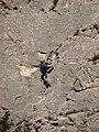 Turda gorges (3959687351).jpg