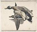 Two Dead Ducks. MET DP809441.jpg