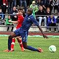 U-19 EC-Qualifikation Austria vs. France 2013-06-10 (087).jpg