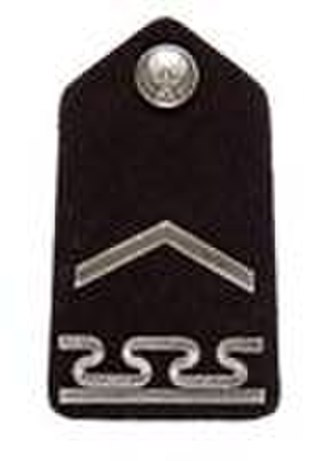 United States Air Force Academy Cadet Insignia - Image: USAF Cadet Staff Sergeant shoulder insignia