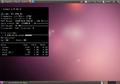 Ubuntu 10.04 conky1.png