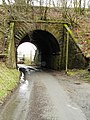 Underpass leading to Rowanburnfoot - geograph.org.uk - 346237.jpg