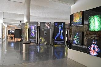 Universum (UNAM) - Part of the brain and nervous system exhibition
