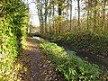 Valleien van Dijle en Laan Dode Bemde - 392201 - onroerenderfgoed.jpg