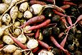 Variety of roots at local market fair.jpg