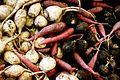 Variety of roots at local market fair.jpg
