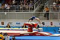Vaulting 1 2015 Pan Am Games.jpg
