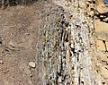 Vertically-tilted beds (Dakota Sandstone, Lower Cretaceous; Red Rock Canyon Open Space, Colorado Springs, Colorado, USA) 12.jpg