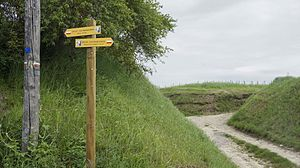 Via Francigena - The Via Francigena – in France given the Grande Randonnée route number GR145 – crossing the Massif de Saint Thierry, Champagne.