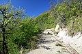 Via degli Dei, Monzuno, discesa da Monte Adone a Brento 05.jpg