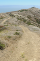 View east on Ridge Trail in San Bruno Mountain State Park.png