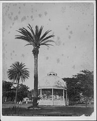 View from Iolani Palace, photograph by Frank Davey (PP-10-11-011).jpg