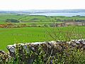 View of Loch Ryan from the bungalow above Craigcaffie - geograph.org.uk - 163471.jpg