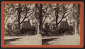 View of wood houses, from Robert N. Dennis collection of stereoscopic views.png