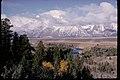 Views at Grand Teton National Park, Wyoming (0814b200-f289-477f-94c0-5d6e2fa489bd).jpg