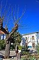 Vila Viçosa - Portugal (10359247284).jpg