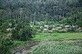 Village in the forest.jpg