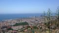 Vista de Santa Cruz de Tenerife.png