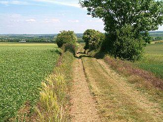 Vieux, Calvados - Image: Voie Romaine Chemin Haussé