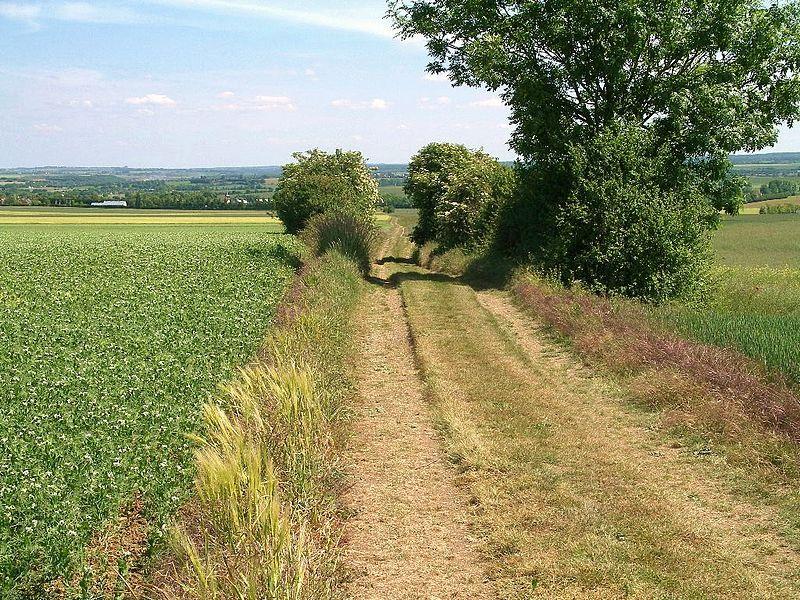 Fichier:Voie Romaine Chemin Haussé.jpg