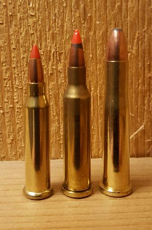 .17 Hornet - Hornady version (center), between .17 Winchester Super Magnum (left) and .22 Hornet (right)