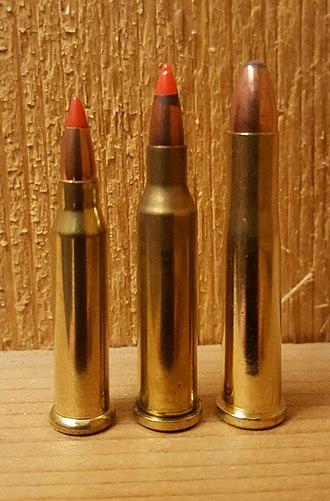 .17 Winchester Super Magnum - Image: WSM + Hornets