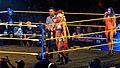 WWE NXT 2015-03-27 22-44-41 ILCE-6000 3346 DxO (17365035392).jpg