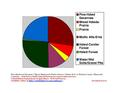 Wadena County Pie Chart Wiki Version.pdf