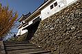 Wakayama Castle17n4592.jpg