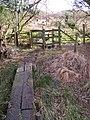 Walkway through marshy ground, near Appleslade, New Forest - geograph.org.uk - 315779.jpg