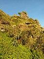 Warm sunlight falls on chariot path mountain.jpg