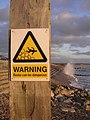 Warning sign on the beach at Milford-on-Sea - geograph.org.uk - 109270.jpg