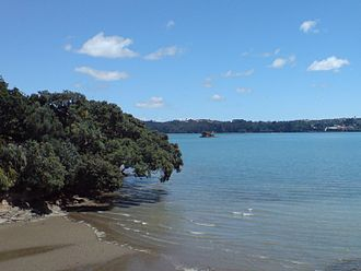 Waitematā Harbour - The eastern edge of Herne Bay, one of the wooded beach reserves typical of the harbour.