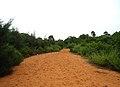 Way to Erramatti Dibbalu (Red Sand Hills) in Visakhapatnam.JPG