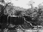 Weeping Rock, Wentworth Falls (2448054216).jpg