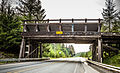 Weyerhauser Mainline Road Enumclaw Washington Bridge (20166044811).jpg