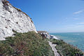 White Cliffs (2751129520).jpg