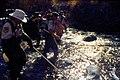 Wild trout project e walker river bridgeport0106 (26183353972).jpg