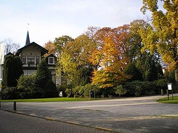 English: Wilhelmina in Zeist in the Netherland...