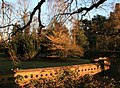 Winter Sun on Wootton Court Gardens - geograph.org.uk - 697857.jpg