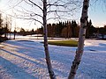 Winter on the course - panoramio (3).jpg