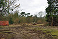Wood pile in field - geograph.org.uk - 1747993.jpg